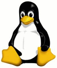 tux - Linux Counter | horário de verão
