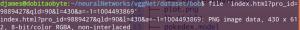 Como criar um dataset - retorno do comando file