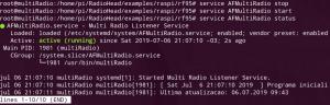 AFMultiRadio Black Edition - service