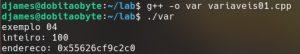 Alocação de memória exibindo valor e endereço